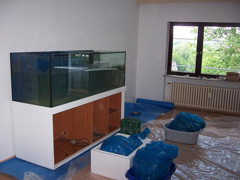 1000l riffbecken aquarium forum. Black Bedroom Furniture Sets. Home Design Ideas