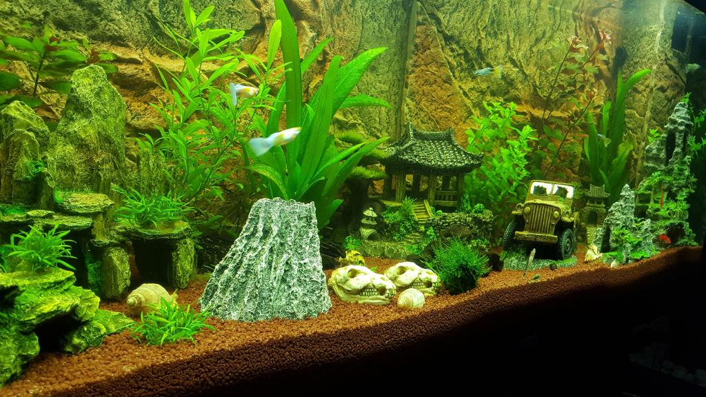 gesamth rte zu hoch ph wert auch seite 2 aquarium forum. Black Bedroom Furniture Sets. Home Design Ideas