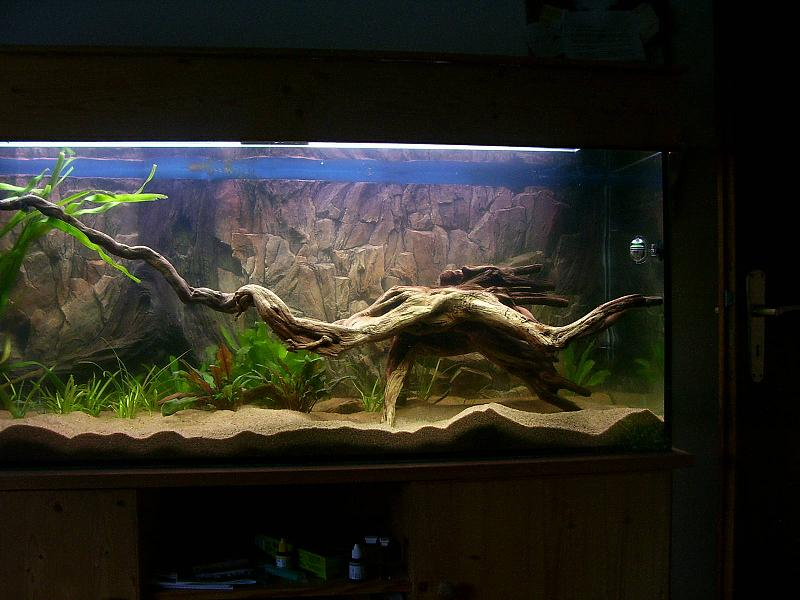 diskusaquarium 450 liter aquarium forum. Black Bedroom Furniture Sets. Home Design Ideas
