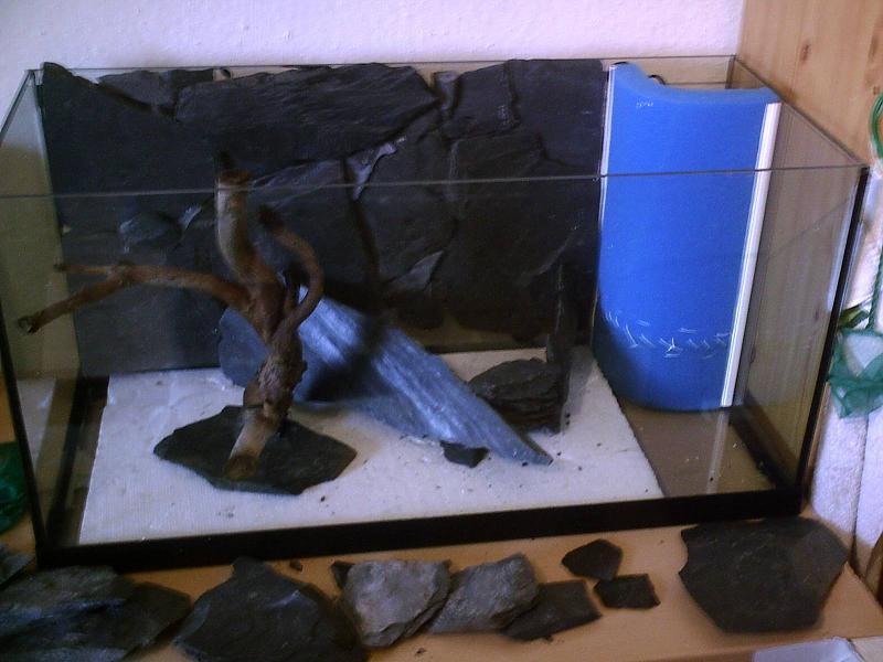 112l becken mit schiefer r ckwand und quarzsand aquarium forum. Black Bedroom Furniture Sets. Home Design Ideas