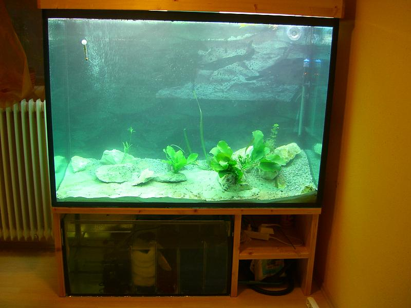 von 0 5 liter auf ber 1000 liter aquarium forum. Black Bedroom Furniture Sets. Home Design Ideas