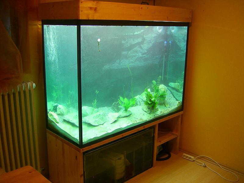 von 0 5 liter auf ber 1000 liter aquarium forum. Black Bedroom Furniture Sets. Home Design Ideas