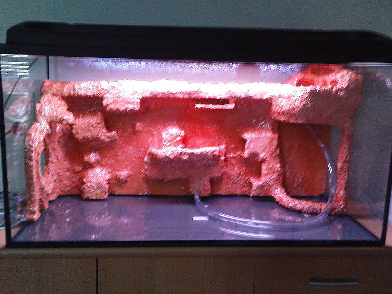 mein erstes aquarium aquaterrarium mit fischen und krabben aquarium forum. Black Bedroom Furniture Sets. Home Design Ideas