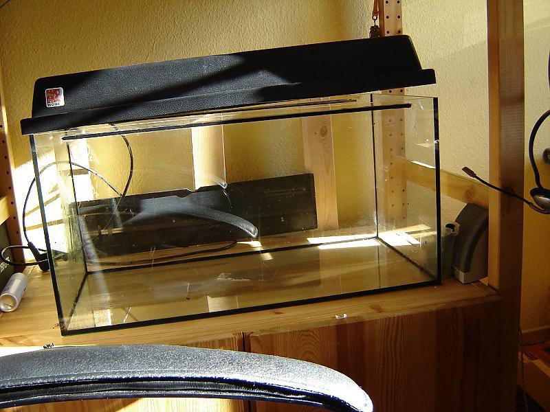 54 l garnelenbecken bau aquarium forum. Black Bedroom Furniture Sets. Home Design Ideas
