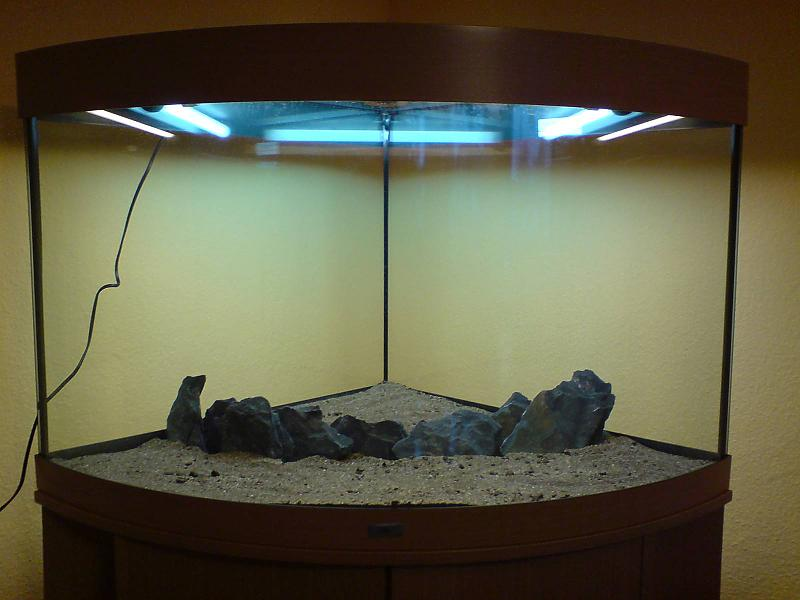 unser eck aquarium trigon 190 aquarium forum. Black Bedroom Furniture Sets. Home Design Ideas