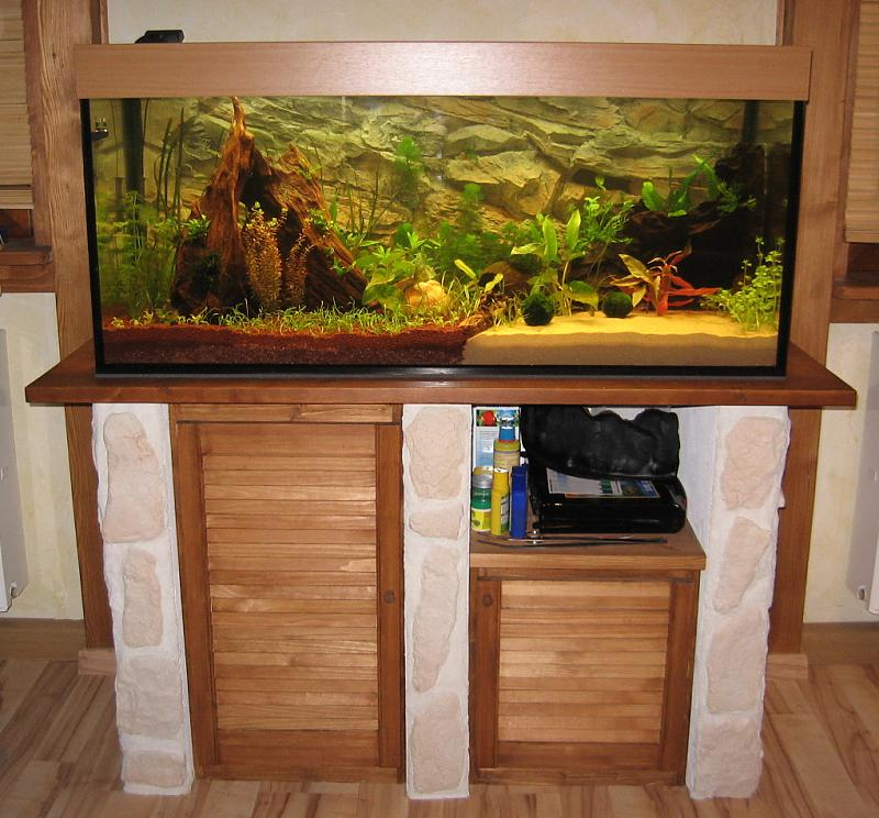 neuer start mit 300 liter aquarium forum. Black Bedroom Furniture Sets. Home Design Ideas