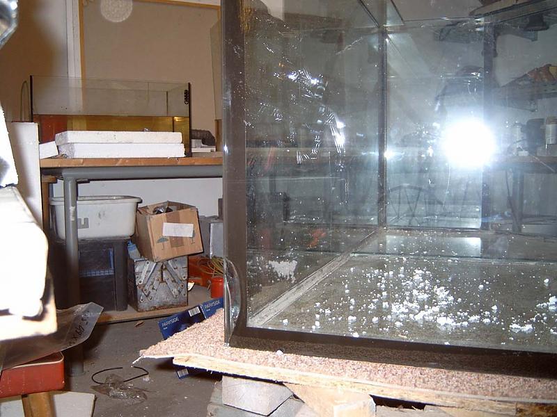 becken reparieren m glich aquarium forum. Black Bedroom Furniture Sets. Home Design Ideas