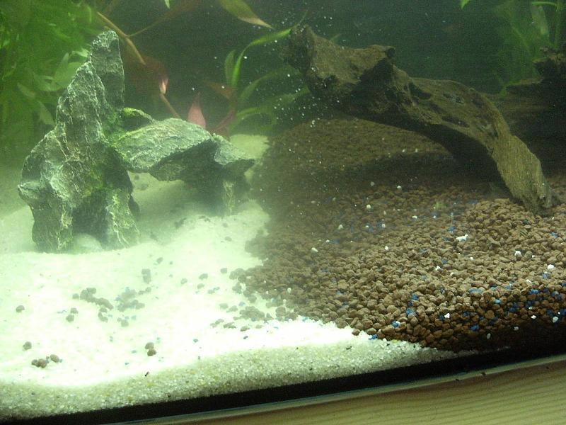 bis 54l 54l halb sand halb kies bodenbewohner aquarium forum. Black Bedroom Furniture Sets. Home Design Ideas