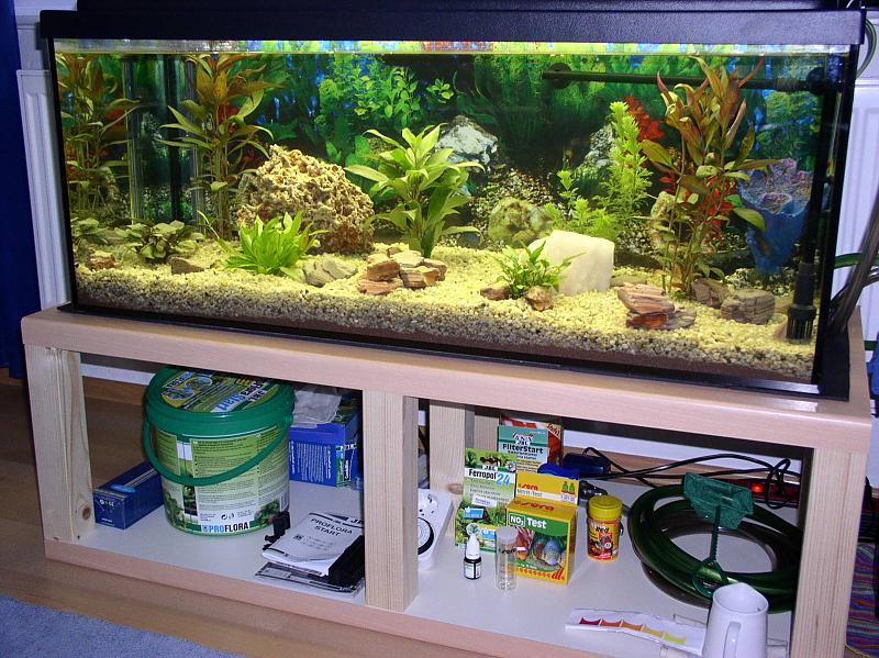 Ein traum wird war mein erstes aquarium aquarium forum for Aquarium unterschrank bauen