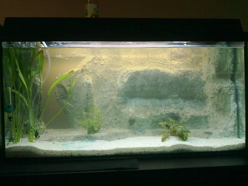 Meine Landschaft (Eigenbau) - Seite 2 - Aquarium Forum